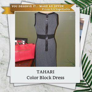 Tahari 6 Sleeveless Color Block Dress